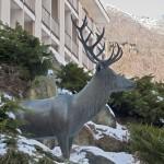 """""""il Cervo simbolico"""" presso il Santuario N. S. di Lourdes a Forno di cazze"""